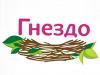 ГНЕЗДО мебельный магазин Омск